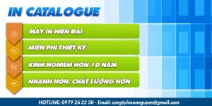 Dịch vụ in catalogue giá tốt