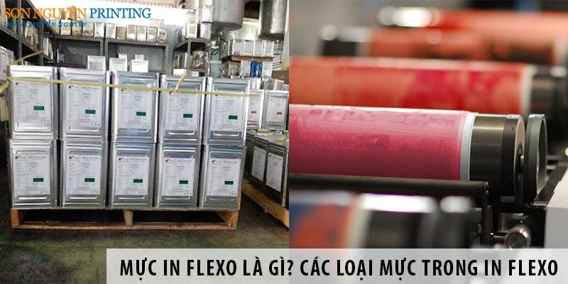 Mực in Flexo là gì? Các loại mực in được dùng trong in Flexo